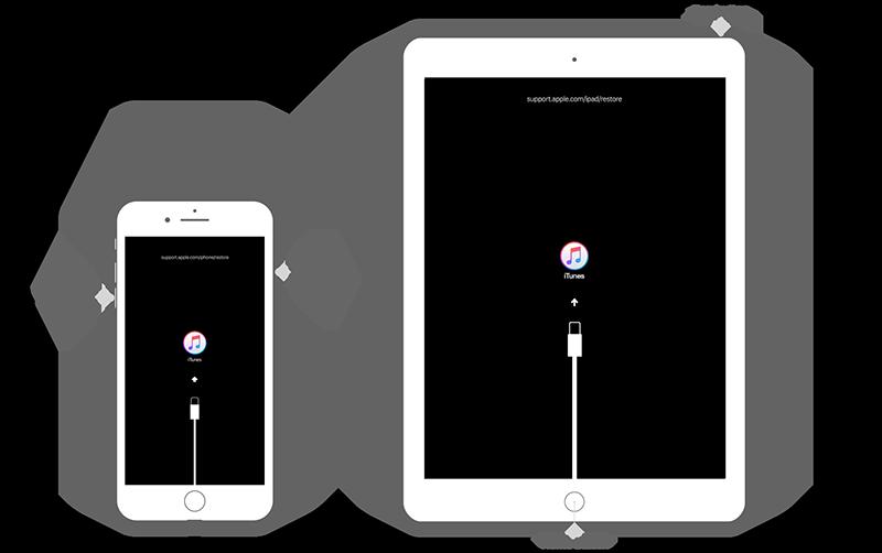 iPhone 7 iPad Recovery