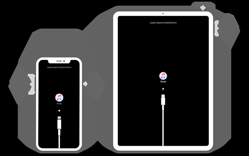 iPhone X iPad Pro Recovery