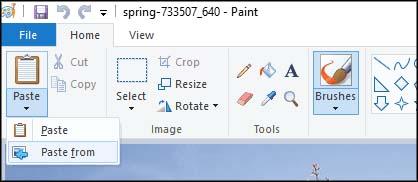 Microsoft Paint 3