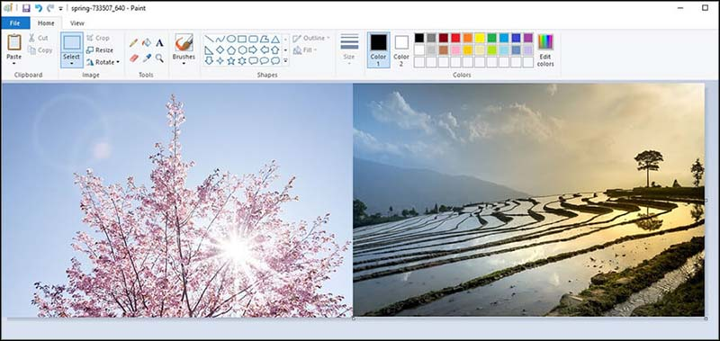 Microsoft Paint 4
