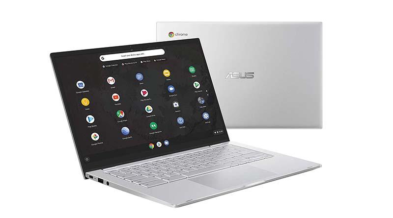 Asus Chromebook C425TA-DH384