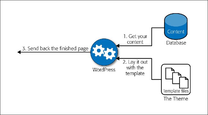 wordpress dan database