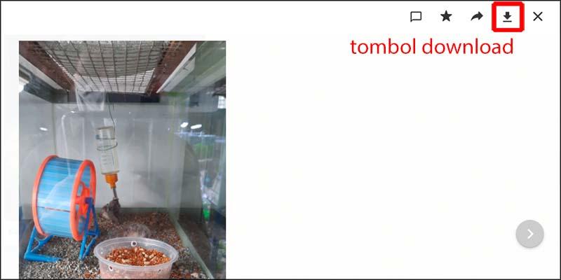 tombol download gambar whatsapp web