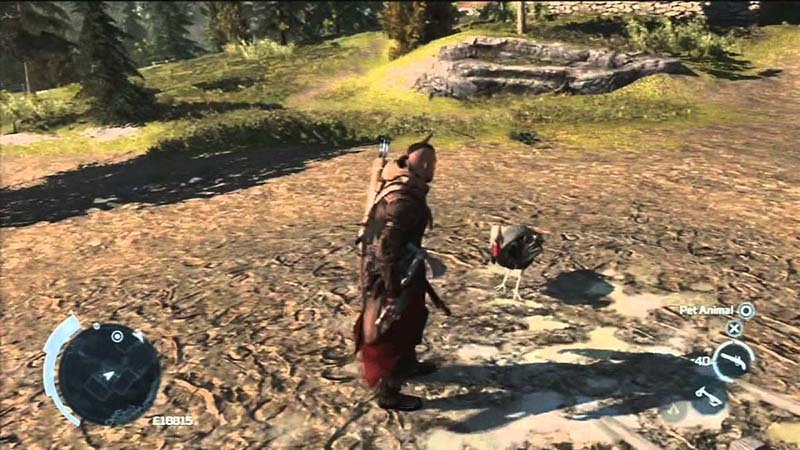 Assassin's Creed III – The Assassin's Turkey