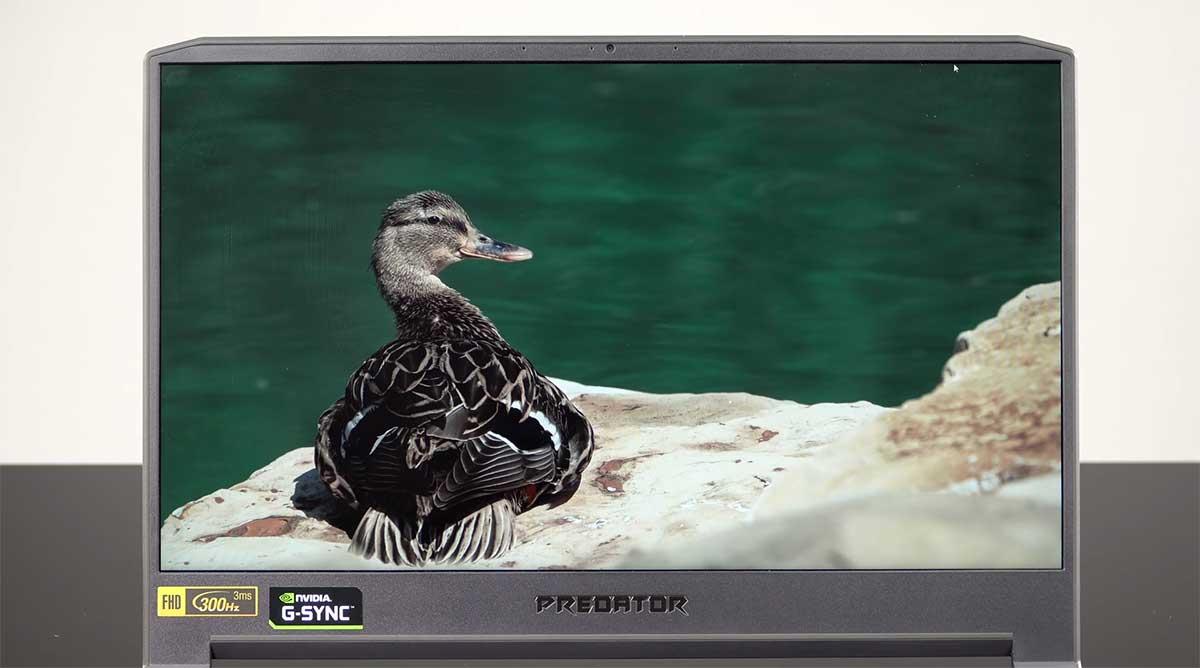 Acer-Predator-Triton-500-(2020)-layar